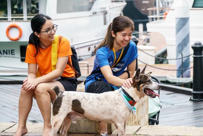 Volunteering-at-ASD-Singapore