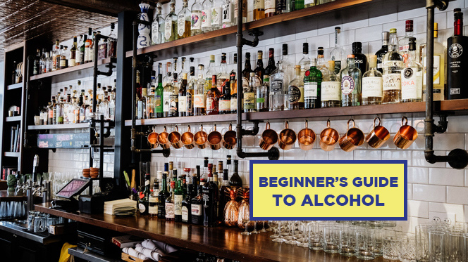 BEGINNER'S GUIDE TO ALCOHOL